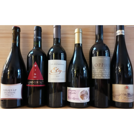 Tasting parcel 10: Red wines - no Bordeaux - up to 30,-